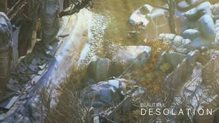 Beautiful Desolation video 7