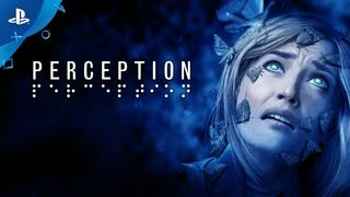 Perception video 8